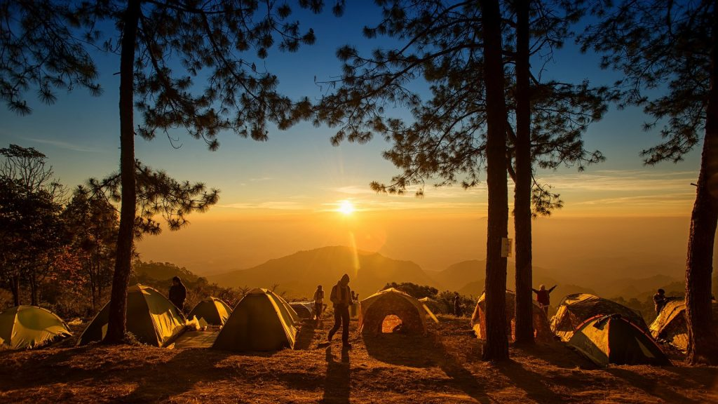 Coronavirus: zomerupdate